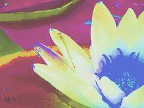 Seerose 3, Serie Flora und Fauna by maneraart