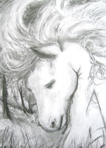 Pferd 001 by Noel Koehn