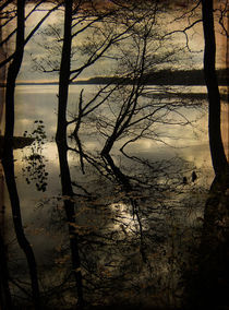Autumn reflections by Evita Knospina