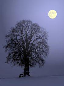 Mondnacht by Klaus-Peter Huschka