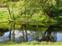Spiegelung auf dem Wasser von malitia