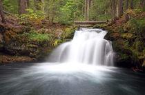 Whitehorse Falls by Rainer Grosskopf