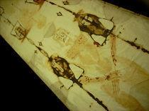 Turiner Grabtuch Shroud of Turin 04 von Bela Manson