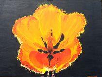 Tulpe mit Morgentau von malatelierstuke