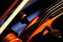 Geige von Boris Manns