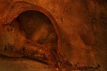 Fossilhaus von Frank Rebl