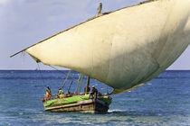 Dhow sailing 10 von Leandro Bistolfi