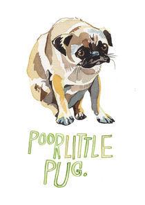 Pug-a4