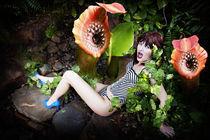Carnivourous plants von myphotography