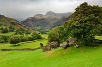 Great Langdale, Cumbria, England von Craig Joiner