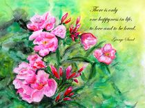 Happyness-oleanderintensiv