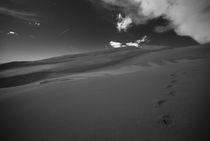 Sanddunestopcanvas2