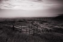 Fence by Alexei Mikhailov