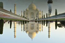 Taj by Wallace Lam