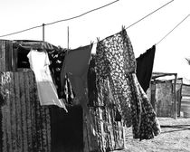 washing line von james smit