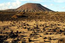 Fuerteventura, Hammada und Montana Roja by Frank Rother