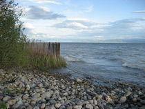 Bodensee von Giseltraud van Doeselar