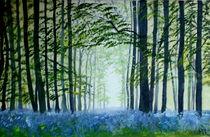 Bluebellwoodfixed