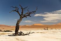 Die Wüste Namib  by Jürgen Klust