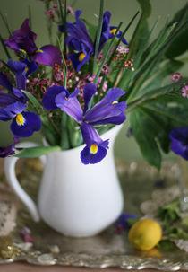 Iris by Inna Merkish