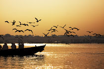 Birds, boat and Nature - Varanasi, India by Soumen Nath