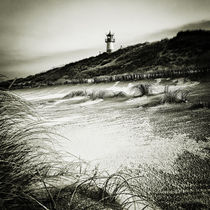 Img-6307-sylt-impressions-14