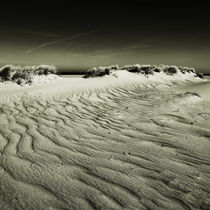 Img-7841-sylt-impressions-23