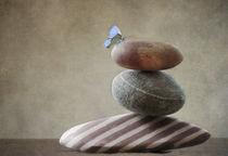 Balanced von Franziska Rullert