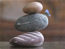 Balanced 2 by Franziska Rullert