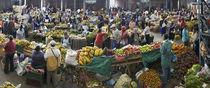 Silvia Market Day by Robert Oelman