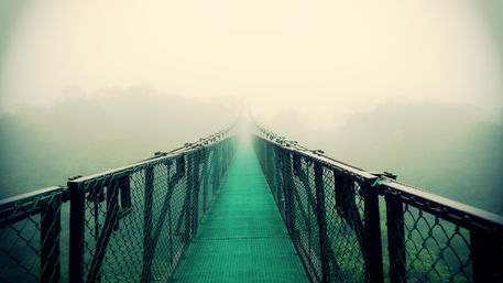 Suspension-bridge