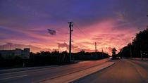 Miami Sunrise by Sookie Endo