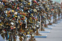 Moscow Love Padlocks by gnubier