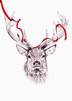 Deer-in-colour