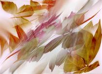 Herbstimpressionen von Ingrid Clement-Grimmer