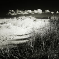 Img-8501-sylt-impressions-26