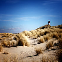 Img-8662-bea2-sylt-impressions-28
