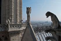 Cathedrale Notre Dame von 1234