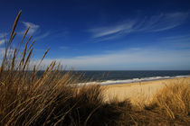 Img-8283-col-bea-sylt-impressions-43