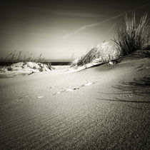 Img-7838-sw-bea-sylt-impressions-39
