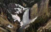 Yellowstone - Lower Falls by tgigreeny
