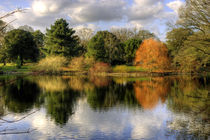 Autumn, Reflected von tgigreeny