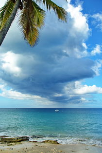 Cloudy Day in St. Croix by Julie Hewitt