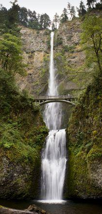 Multnomah Falls by tgigreeny