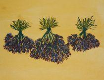 Lavendel von Marion Floetenmeyer
