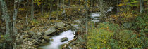 High angle view of a stream passing through a forest, New Hampshire, USA von Panoramic Images