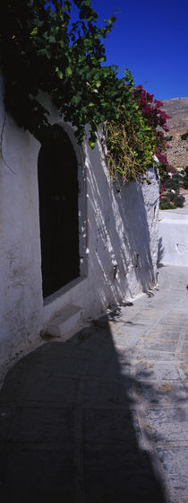 Ivy on the roof of a building, Lindos, Rhodes, Greece by Panoramic Images