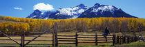 Last Dollar Ranch, Ridgeway, Colorado, USA by Panoramic Images