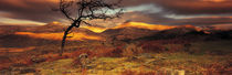 Snowdonia National Park, Wales, United Kingdom von Panoramic Images