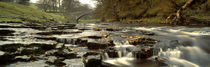 River Ribble, North Yorkshire, England, United Kingdom by Panoramic Images